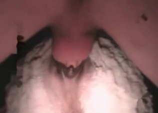 Horse's anal hole drilled